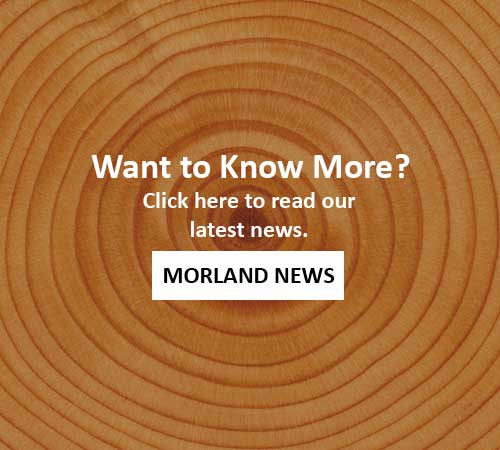 Morland News